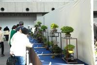 09・03・29春雅展 会場内.jpg