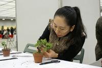 ファミリー盆栽無料セミナー 川村さん父娘(第35回雅風展)