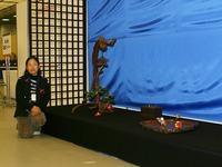 生活の中の小品盆栽 太田ミヨ子氏(第35回雅風展)